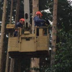 Работы на высоте для рабочих люльки и других квалифицированных работников.